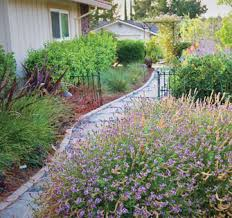 alternatives to grass in backyard low maintenance landscaping replace your lawn with grass