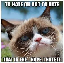 Meme Angry Cat - grumpy cat memes funny funny cat pictures