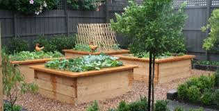 Kitchen Garden Designs Vegetable Garden Design Ideas Get Inspired By Photos Of