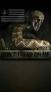 Don T Tread On Me Tattoo Ideas 44 Best Dont Tread On Me Images On Pinterest American History
