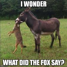 What Did The Fox Say Meme - ouch imgflip