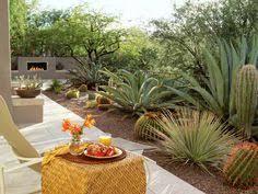 Desert Backyard Ideas How To Plant A Waterless Garden Outdoor Theme Backyard