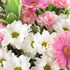 mothers day flowers to buy online with free delivery