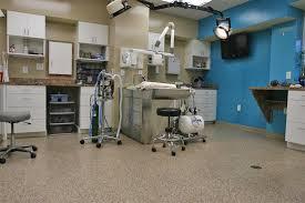 veterinary office flooring floors for veterinarians