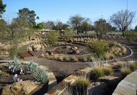 Landscapers San Diego by Xeriscaping Ideas How To Xeriscape Your San Diego Yard Install