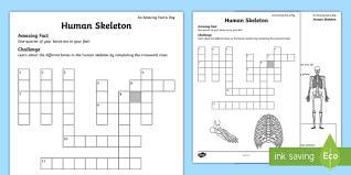 ks2 science movement worksheets movement skeleton page 1