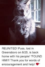 25 memes good puss good puss memes