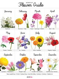 wedding flowers guide a visual guide to wedding flowers by month what s learning and