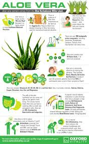 best 25 aloe benefits ideas on pinterest aloe juice benefits