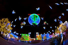 osborne lights at disney world disney tourist