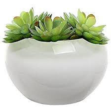 amazon com 3 5 inch small round modern white ceramic succulent