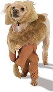 cowardly lion costume wizard of oz cowardly lion pet costume pet supplies