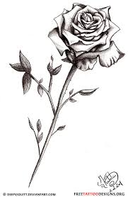 50 rose tattoos meaning all things roses pinterest rose
