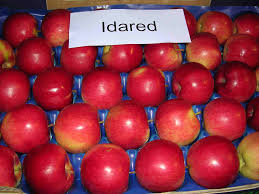 grany fresh apples idared red golden delicious muco grany smith buy