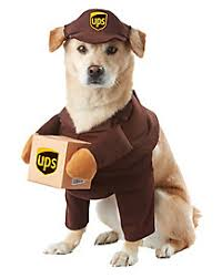 Ghost Dog Halloween Costumes Dog U0026 Cat Costumes Pet Halloween Costumes Spirithalloween