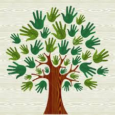 eco friendly tree illustration for greeting card wooden