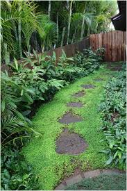 backyards gorgeous landscaping your backyard backyard