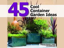 container gardening 45 cool container garden ideas