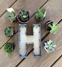 monogram succulent garden sometimes homemade