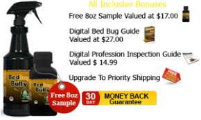 how can you get rid of bed bugs how to get rid of bed bugs permanently