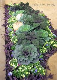 image result for pansy landscape design commercial flower beds