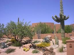 california desert landscaping ideas for backyard front yard