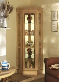 living room charming display cabinets for pleasing glass 24 verstak