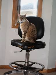 guitar chair helpformycredit