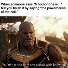 Finish It Meme - when someone says mitochondria is but you finish it by saying the