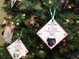 angel tree benefits medical care for pets blue ribbon news