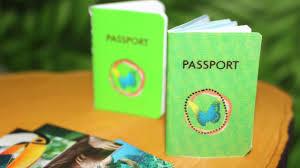 diy american doll passport u0026 national geographic magazine