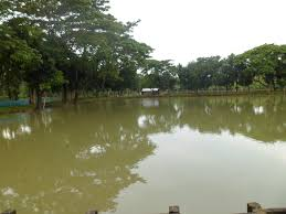 150 Meters Is How Many Feet Pond Management Modern Farming Methods