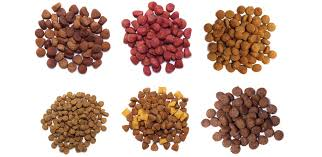 best food for dogs 101 free dog food buying guide