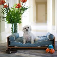 bamboo daybed berry blue pet lounge studios touch of modern