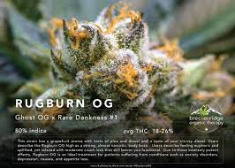 Treatment For Rug Burn Rugburn Twitter Search