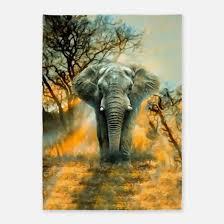 Elephant Outdoor Rug Elephant Print Rugs Elephant Print Area Rugs Indoor Outdoor Rugs