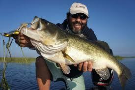 2017 lake st clair restaurant bassmaster elite annual fishing tournament in lake st clair