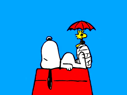 snoopy wallpaper qygjxz