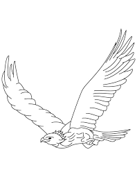 special eagle coloring pages nice kids colorin 7445 unknown