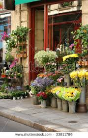 flower shops flower shop stock images royalty free images vectors