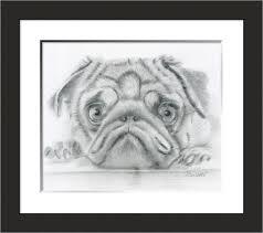 original pug drawing paulette farrell artist u2013 my blog