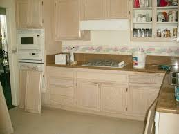 Best Wood Stain For Kitchen Cabinets by Kitchen Paint Or Stain Kitchen Cabinets In Best Cabinet