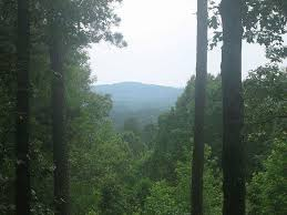 Louisiana mountains images The highest elevation point in louisiana is driskill mountain or jpg