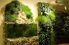 Indoor Vertical Gardens - vertical garden decor png