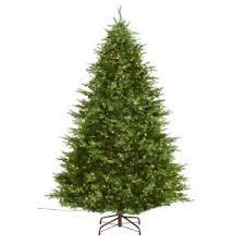 martha stewart living 7 5 ft indoor pre lit glittery bristle pine