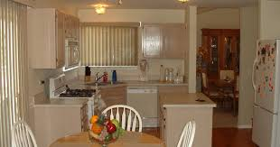 kitchen cabinets with backsplash cabinet important espresso kitchen cabinets ideas glamorous