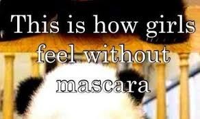 Mascara Meme - funny memes comics at funnyand com the best funny memes page 608