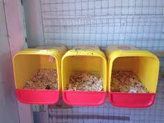 15 chicken nesting box hacks chicken nesting boxes nesting