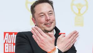 Elon Musk Elon Musk Deletes Pages For Tesla Spacex Newshub