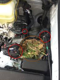lexus vsc check engine light problem 2014 4runner w 1900mi check engine trac off limp mode